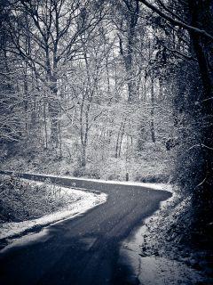 RLS_091205_002_snowride