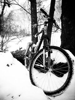 RLS_100109_001_ride