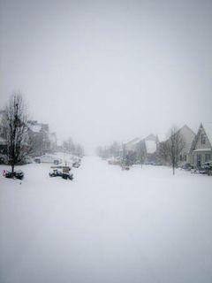 RLS_100130_002_snowjog-TPad
